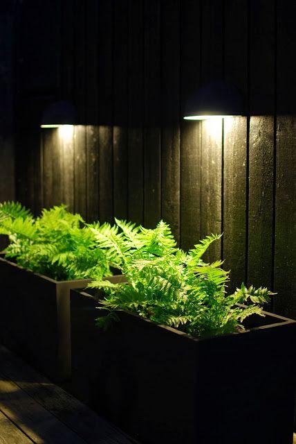 Almbacken: Belysning i trädgården