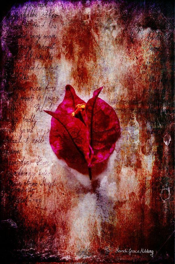 """""""Solitude"""" - Fotokunst"""