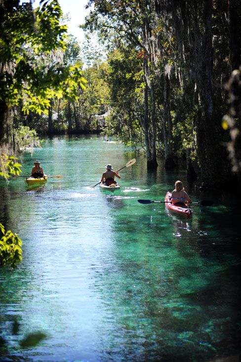 Your Guide to an Old Florida Summer. There is so much more to Florida than the beaches!