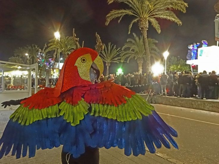 Picture of Parrot Mask and Wings