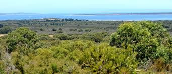 Image result for french island victoria