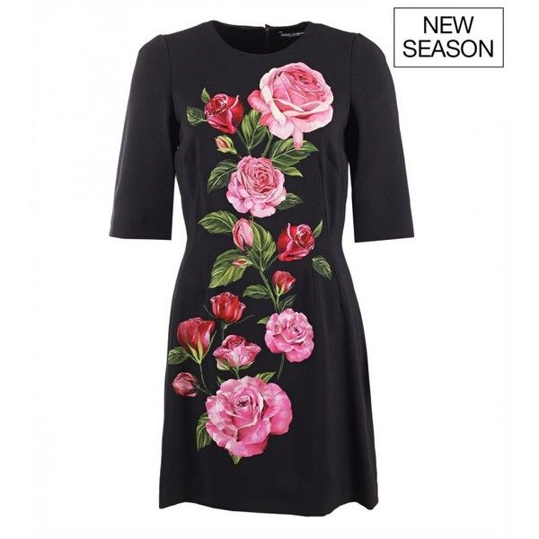 Dolce & Gabbana Black rose print cady dress ($1,695) ❤ liked on Polyvore featuring dresses, evening dresses, short floral dresses, summer evening dresses, floral evening dresses and special occasion dresses