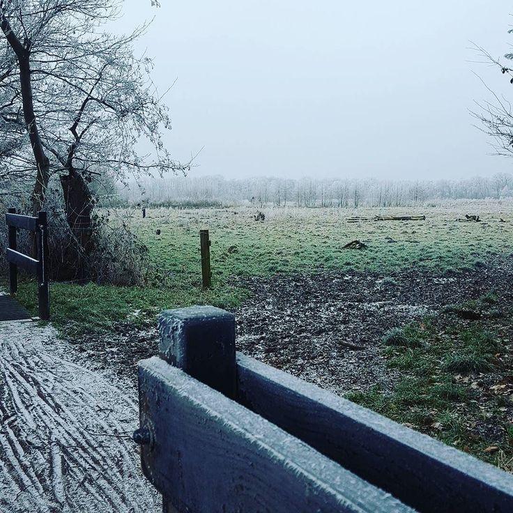 Lekker koud buiten.... Neem de tijd om even nog een koffie te drinken.  #lekkerkoudbuiten #lekkerkoud #bevroren #brrrrr #winter #genietervan #winterpret #wintergevoel #winterfeeling