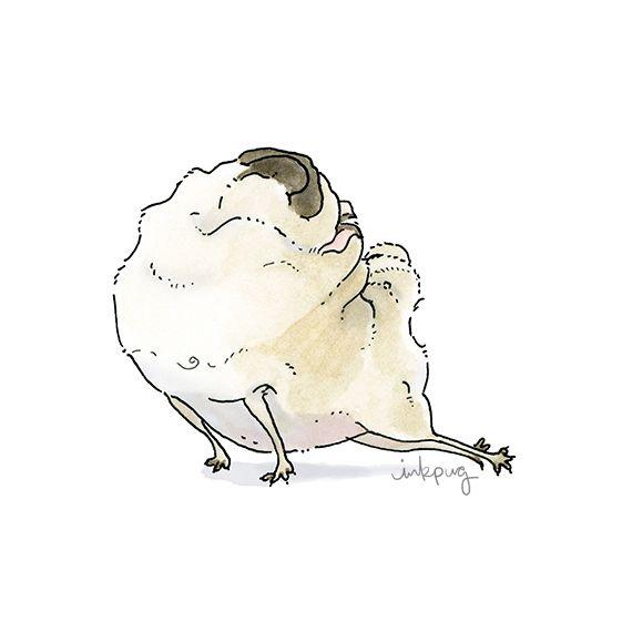 Pug Yoga?