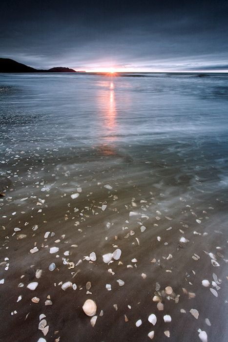 Paekakariki Kapiti Coast District, North Island, New Zealand. Imagine running into the water there, minus the shells on the feet.