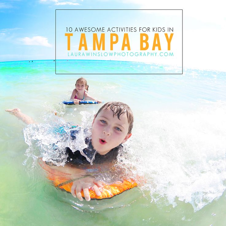 Summer Camp Directory For Tampa Clearwater St Petersburg: 25+ Best Ideas About Tampa Bay Florida On Pinterest