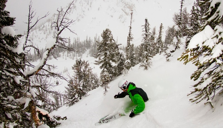 Last weeks #Powder pic of the week! Kicking Horse Resort