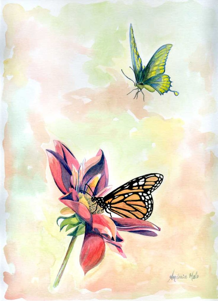 Watercolor of butterflies on a flower; handmade original for collection by FantasyView on Etsy