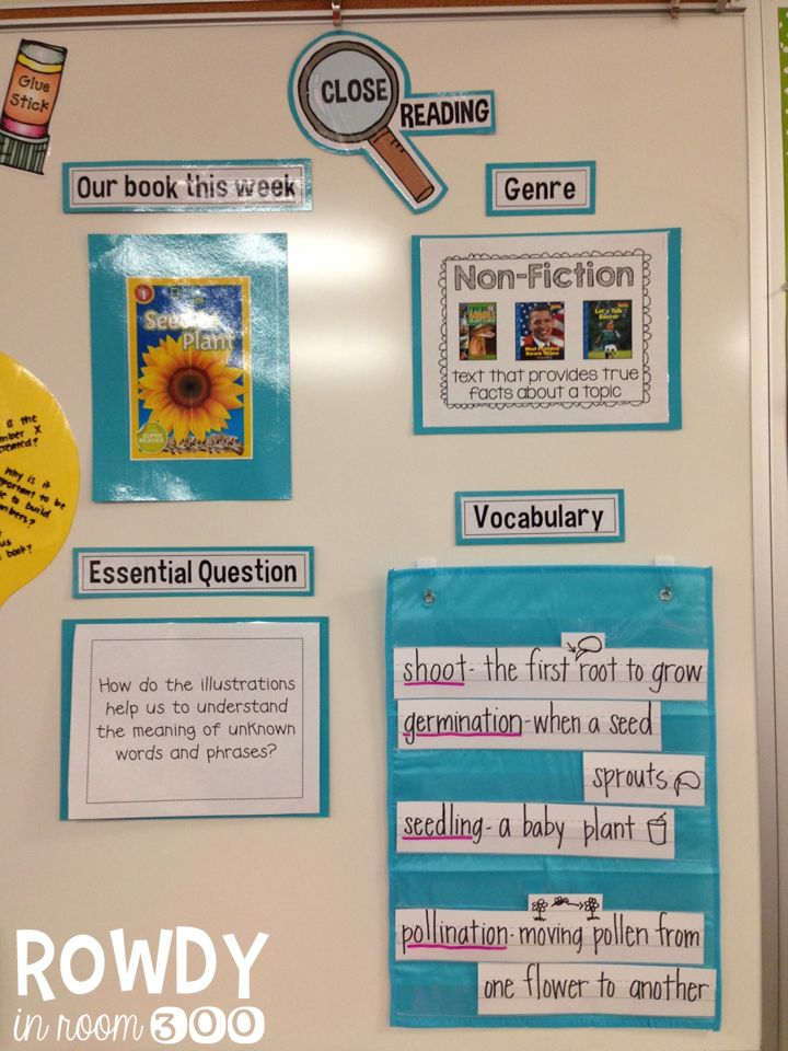 Great way to set up a display for Close Reading