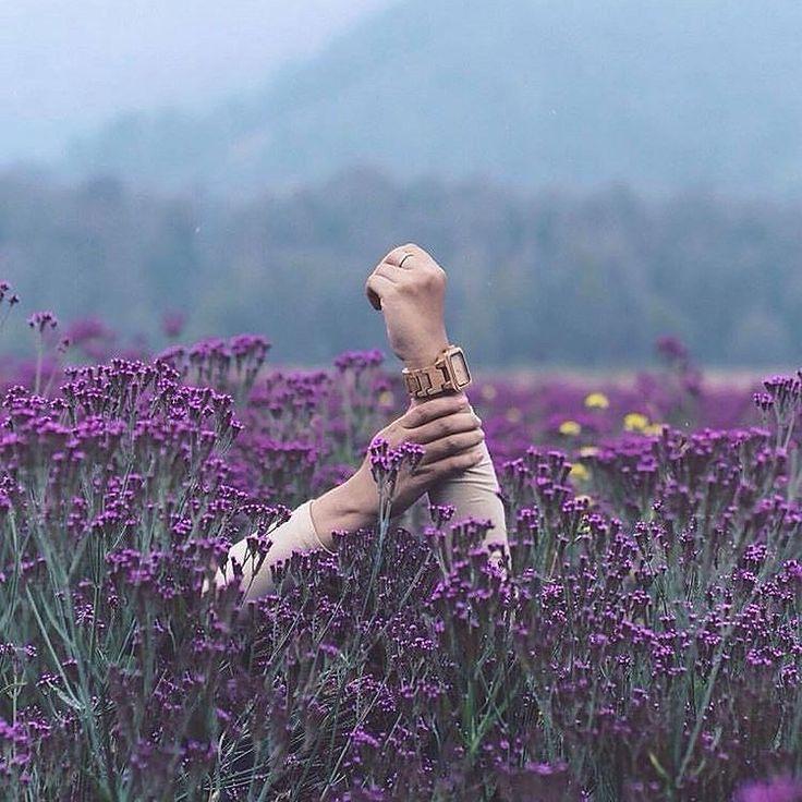 Yang masih belum percaya keindahan gunung Semeru silahkan perhatikan foto ini deh.. lokasinya di oro-oro Ombo pendakian gunung Semeru. Berasa ada diantara pohon sakura  Mampir dan Cek detail wisata Semeru di IG: @bromokita_itenery  #trip #opentripbromo #semeru #malanghits #tourist #holiday #indonesiangirl #indonesia #bromokita #bromotour #paketwisata #jalan2 #liburan #backpaker
