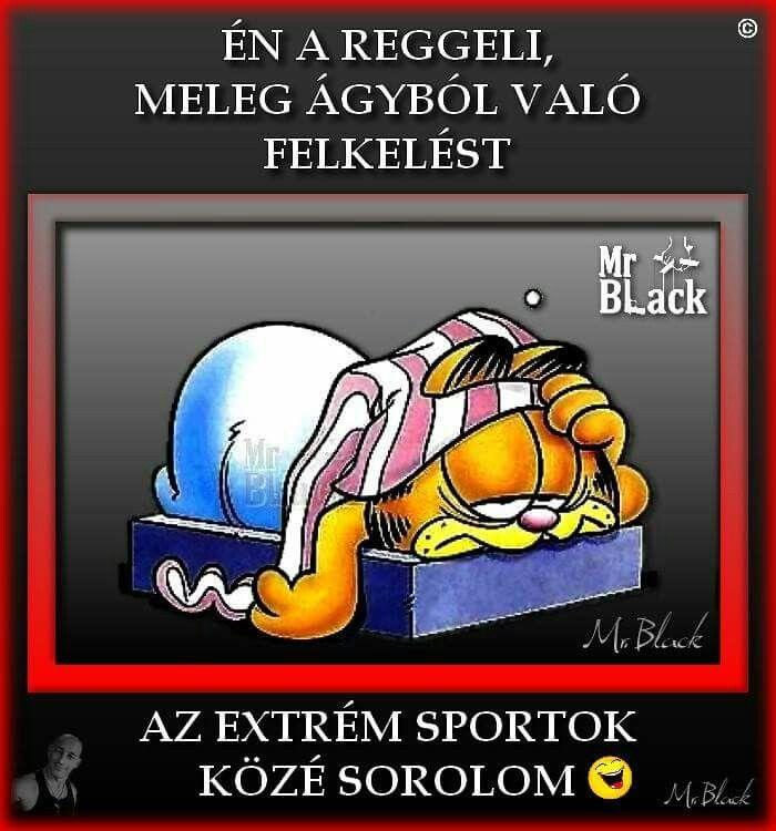 Sportok@vicc.vicces