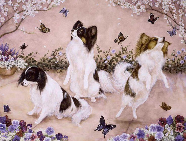 Chiens papillon entourés de papillons papillons