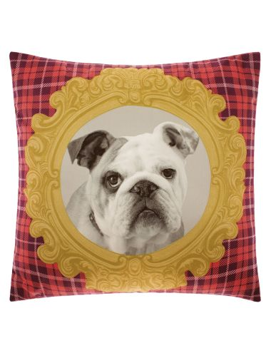 Cute and quirky, celebrate vintage with a twist in these old school pet-portrait cushions. The George cotton sateen cushion featuresa digitally-printed Bulldog within an ornate gold frame and red plaid backdrop.