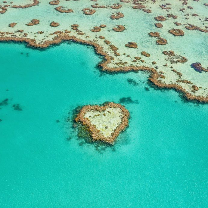 11 epic luxury helicopter experiences in Queensland