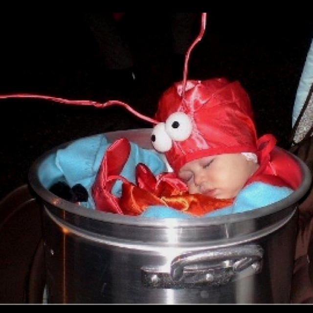 My child will be a crawfish in a crawfish boiler one year for halloween!