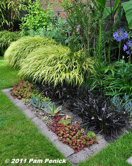 ... Vegetable Garden Ideas For Shaded Areas