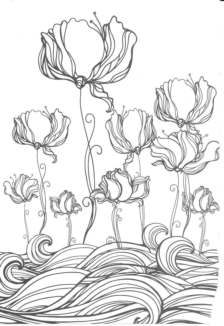 140 best Malvorlagen - Coloring Pages images on Pinterest | Adult ...