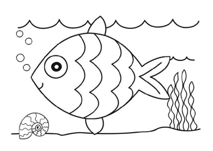 ausmalbilder fische kostenlos  ausmalbilder fische fisch