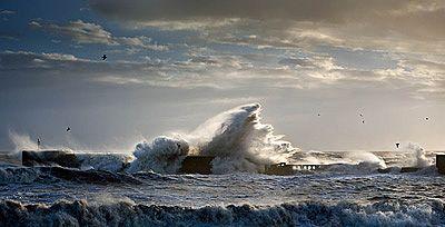 'Big Wave at Hastings' David Purdie