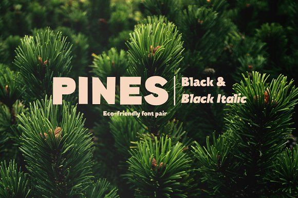 Pines Black & Pines Black Italic by Piñata on @creativemarket