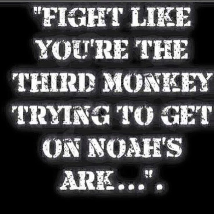 Humor Inspirational Quotes: We Will Succeed Unlike The Third Monkey... : NoFap