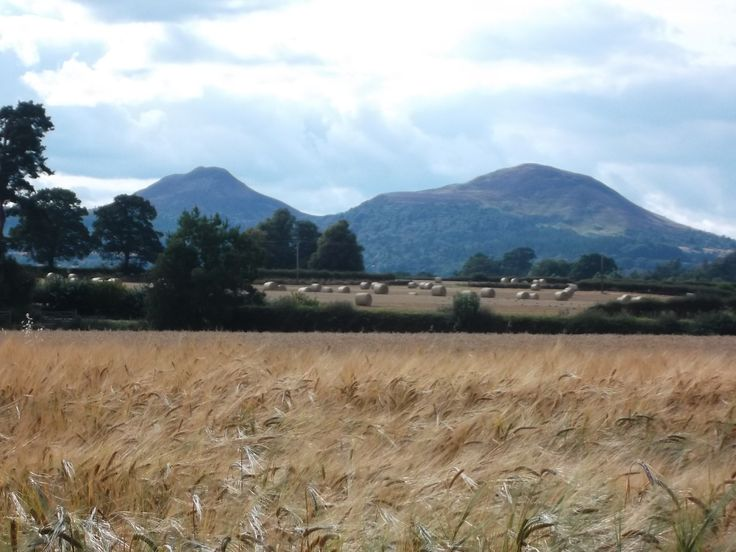 The Eildons. Epic hills in genteel countryside ... alias Trimontium to the Romans. Stunning in every season.