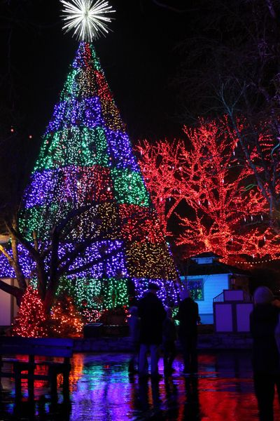 Christmas at Silver Dollar City, Branson, Missouri  I can't wait to take the kids this year.