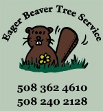 Eager Beaver Tree Service - tree and shrub removal, tree and shrub pruning, stump grinding, underbrush removal    http://eagerbeavertreeservice.com/cape-cod/  A member of the Yarmouth Chamber of Commerce: www.yarmouthcapec...