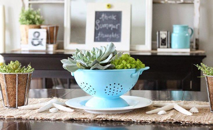Plantas na cozinha Adorei demais essa ideia de colocar as suculentas no escorredor de macarrão, ótima opção para decorar a cozinha.