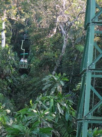 "$40-50 per person.  Gamboa Rainforest Resort: The cable car at Gamboa.  ""Glide through the jungle on our Aerial Tram and see the rainforest as its monkeys and exotic birds do. Cruise along on one of the Panama Canal tours to Monkey Island for a visit with its playful inhabitants."""