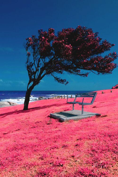 Maiden Cove, Cape Town by Ahmad Al Zarouni