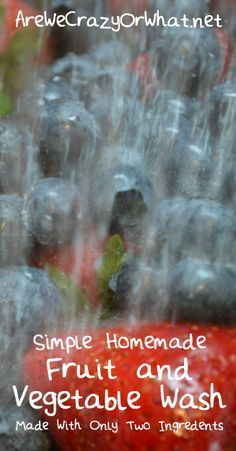 Simple Homemade Fruit and Vegetable Wash~AreWeCrazyOrWhat.net