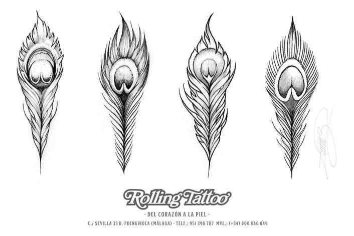 pluma pavo real tattoo - Buscar con Google