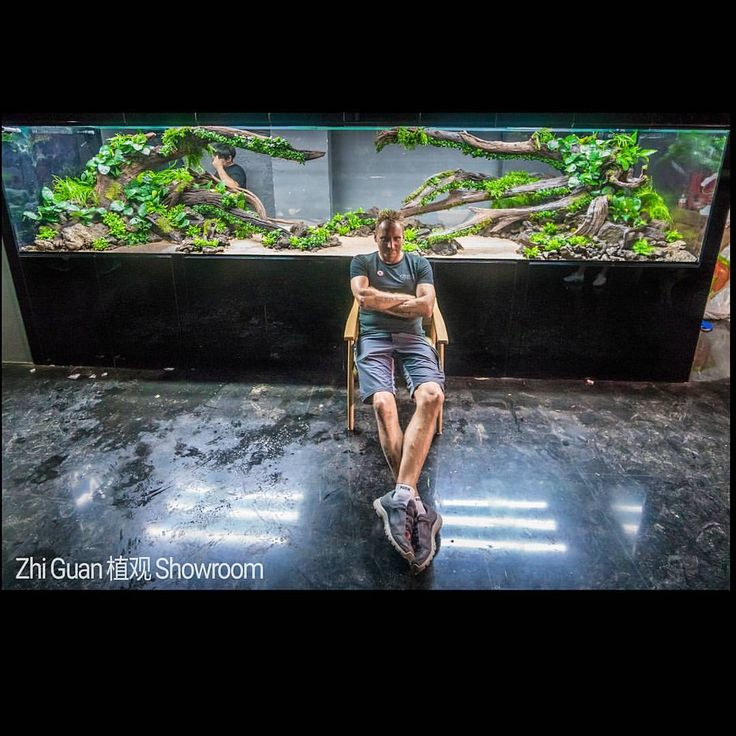 "2,339 Likes, 18 Comments - Oliver Knott (@ok_aqua) on Instagram: ""Location: Zhi Guan / Zhengzhou China Tank Size: 480x120x100cm Volume: 5.760 liter…"""