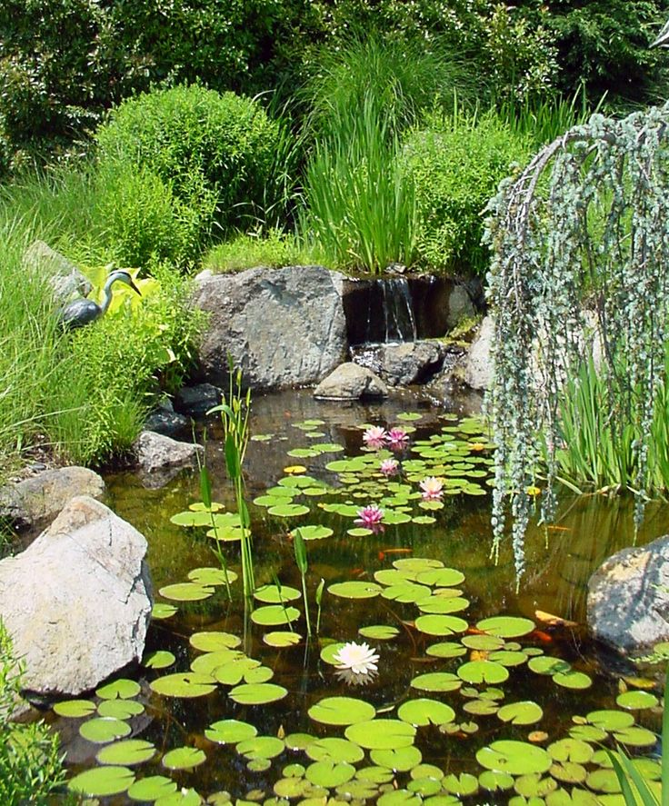 How to plan for a small backyard pond landscaping for Portable fish pond