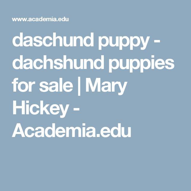 daschund puppy - dachshund puppies for sale | Mary Hickey - Academia.edu