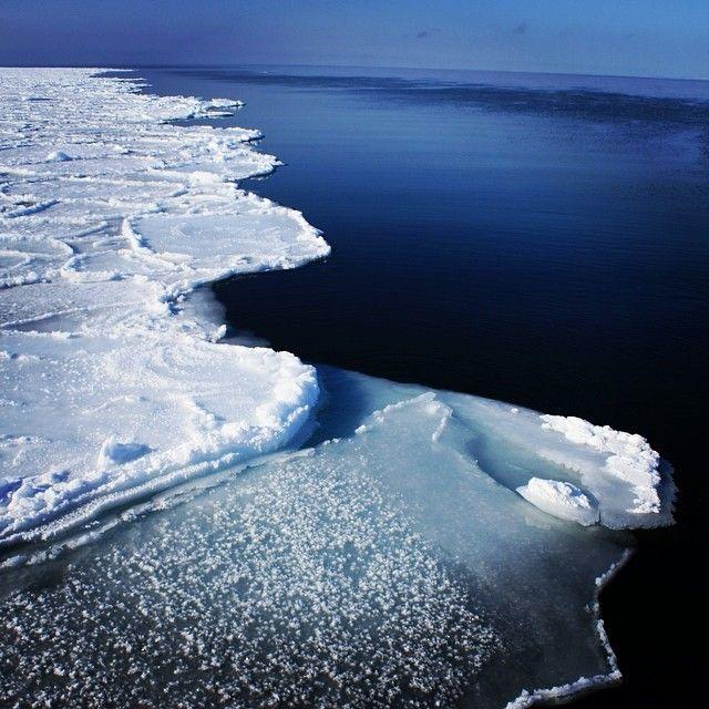 Кромка льда: что мы видим на фото? | #Арктика #Океан #Лед #ПопНаука | #профессия #географ #специальность #океанология #метеорология #гидрология исследуем #океан #атмосфера #лед #климат - применяем знания из #школа по #физика #химия #биология #математика #география #экология - выбираем #вуз #спбгу #мгу #рггму и другие!