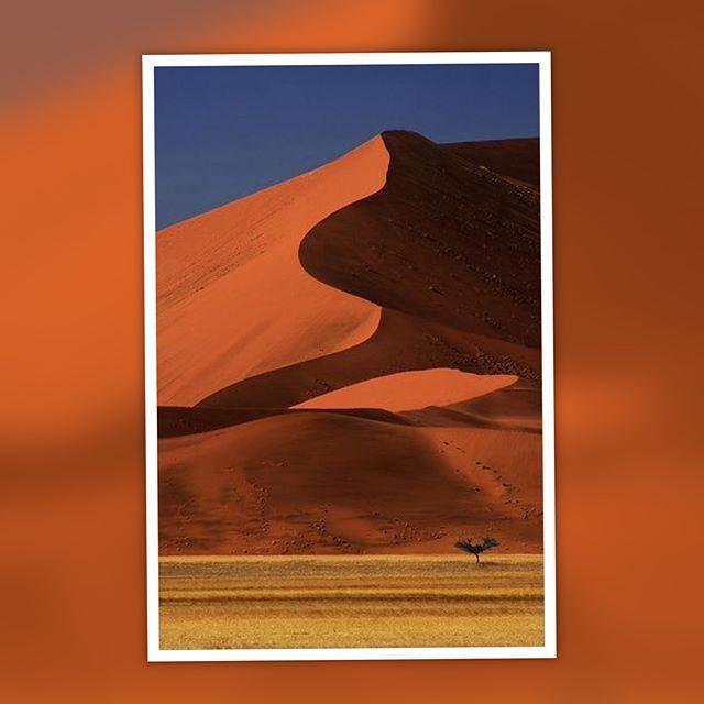 """#Namibia """"Si explorar es una de las cosas que siempre has querido hacer, tienes que conocer las dunas más altas del planeta. Aunque el desierto más grande del mundo se encuentre en el Sáhara, las cimas arenosas más elevadas del mundo están en otro país africano, Namibia. Sus dunas pueden llegar a medir tanto como un edificio de 60 pisos."""" #by la vanguardia.com #trip #traveler #travelblog #travelpics #travelgram #travelguide #travellover #travelgoals #traveladdict #beautifulplaces #visitmy..."""