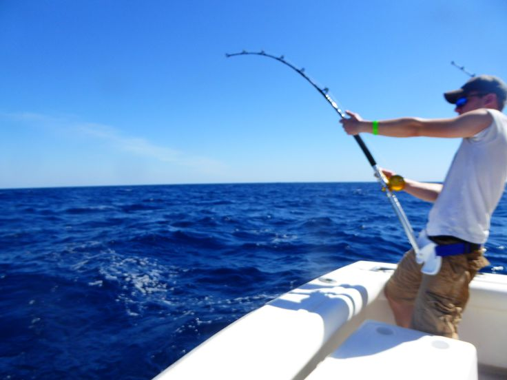 17 best ideas about deep sea charters on pinterest deep for Deep sea fishing trips
