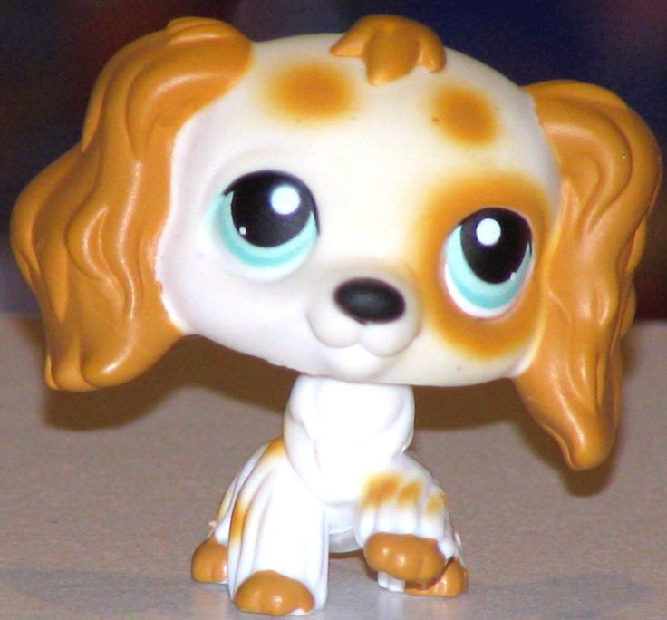 $40.00 - Cocker Spaniel 344 Puppy Ultra RARE LPS Dog Lot | eBay