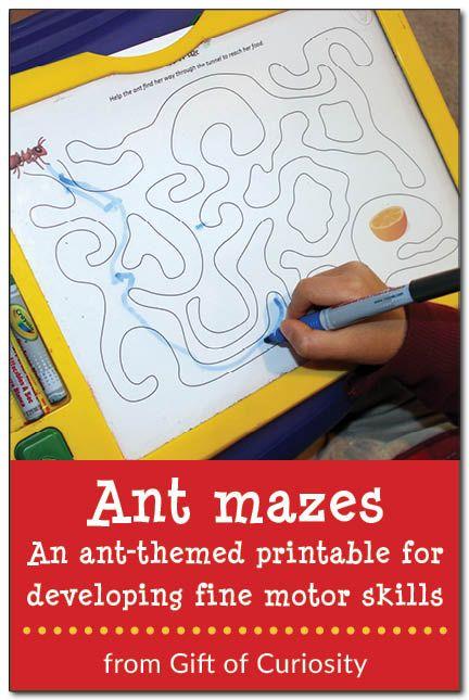 Ant mazes! - Free ant-themed printables for developing fine motor skills. #freeprintables #ants #handsonlearning || Gift of Curiosity