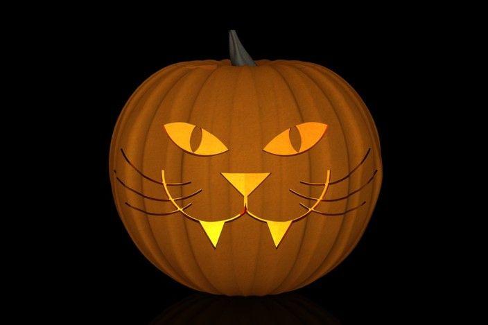 Best 25 cat pumpkin carving ideas on pinterest cat for Cat carved into pumpkin