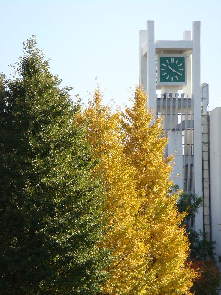 Asia University campus