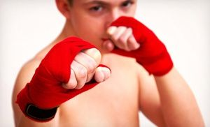 Groupon - 10 or 16 Martial Arts Lessons with Uniform at Vision Martial Arts (Up to 95% Off). 12 Options Available. in Multiple Locations. Groupon deal price: $20.00