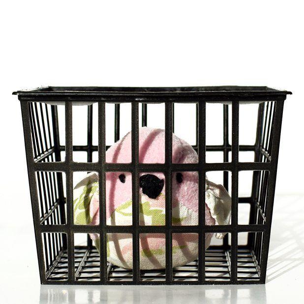 A jeśli ktoś nie lubi wiosny, to mam też ptaszka w więzieniu. 😈 #birdinprison #bird #pinkbird #ptaszek #smietki 🐦