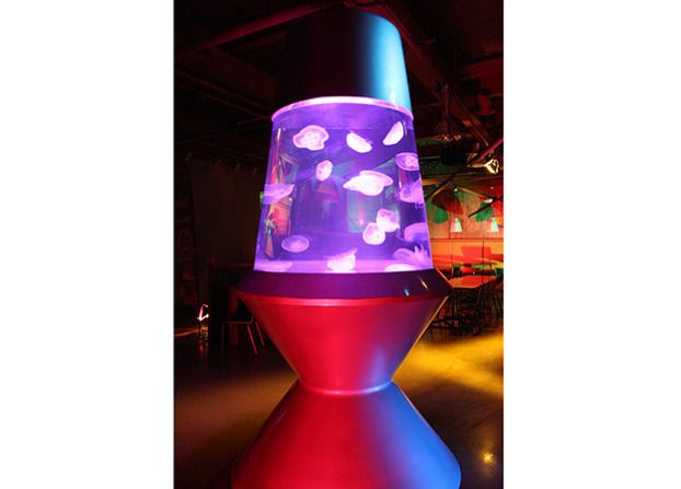 Want lava lamp jellyfish tank from tanked made by atm for Fish lava lamp