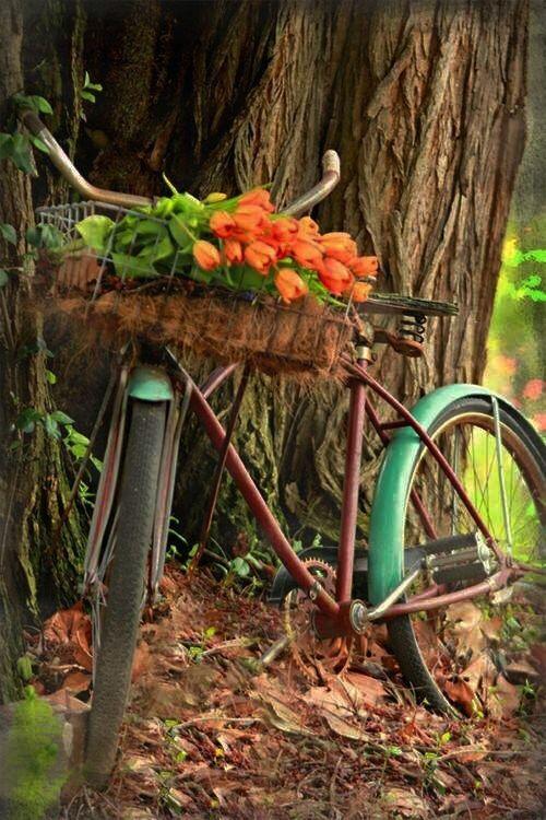 Vintage https://www.uksportsoutdoors.com/product/26-inch-alloymountain-bike-bicycle-chrisson-roaner-fully-unisex-with-24s-shimano-2xdisc-white-matt/