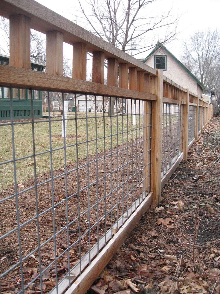 Garden fence idea ... The metal mesh is cattle panel. Strong enough to last and to pull growing ivy & vines off of.
