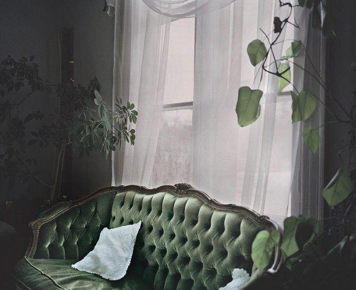 velvet couch/ plants/ light