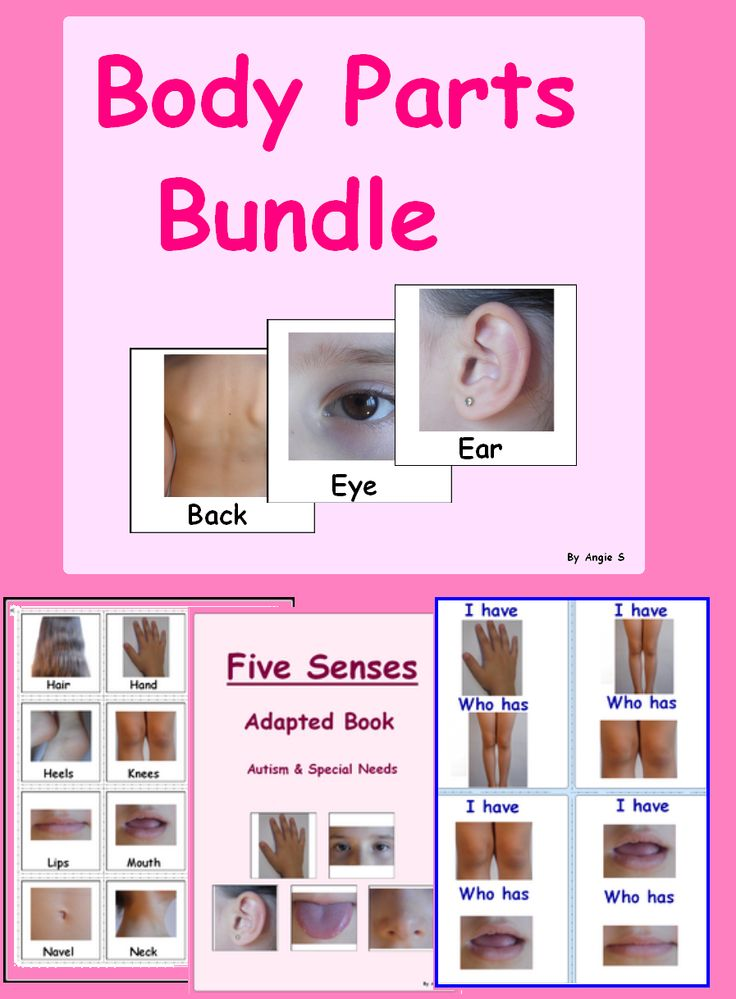 BODY PARTS BUNDLE- contains 7 files. Buying each of these products separately would cost $25,5. You save $7,5!!! #BodyParts For more resources follow https://www.pinterest.com/angelajuvic/autism-special-education-resources-angie-s-tpt-sto/